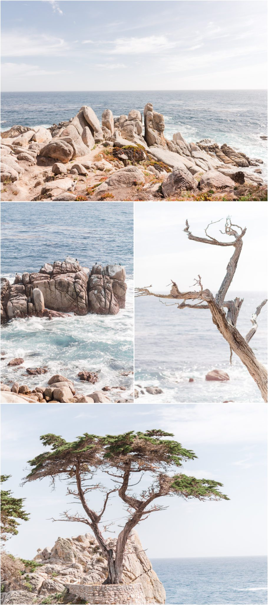 17-Mile Drive Pebble Beach and the Lone Cypress