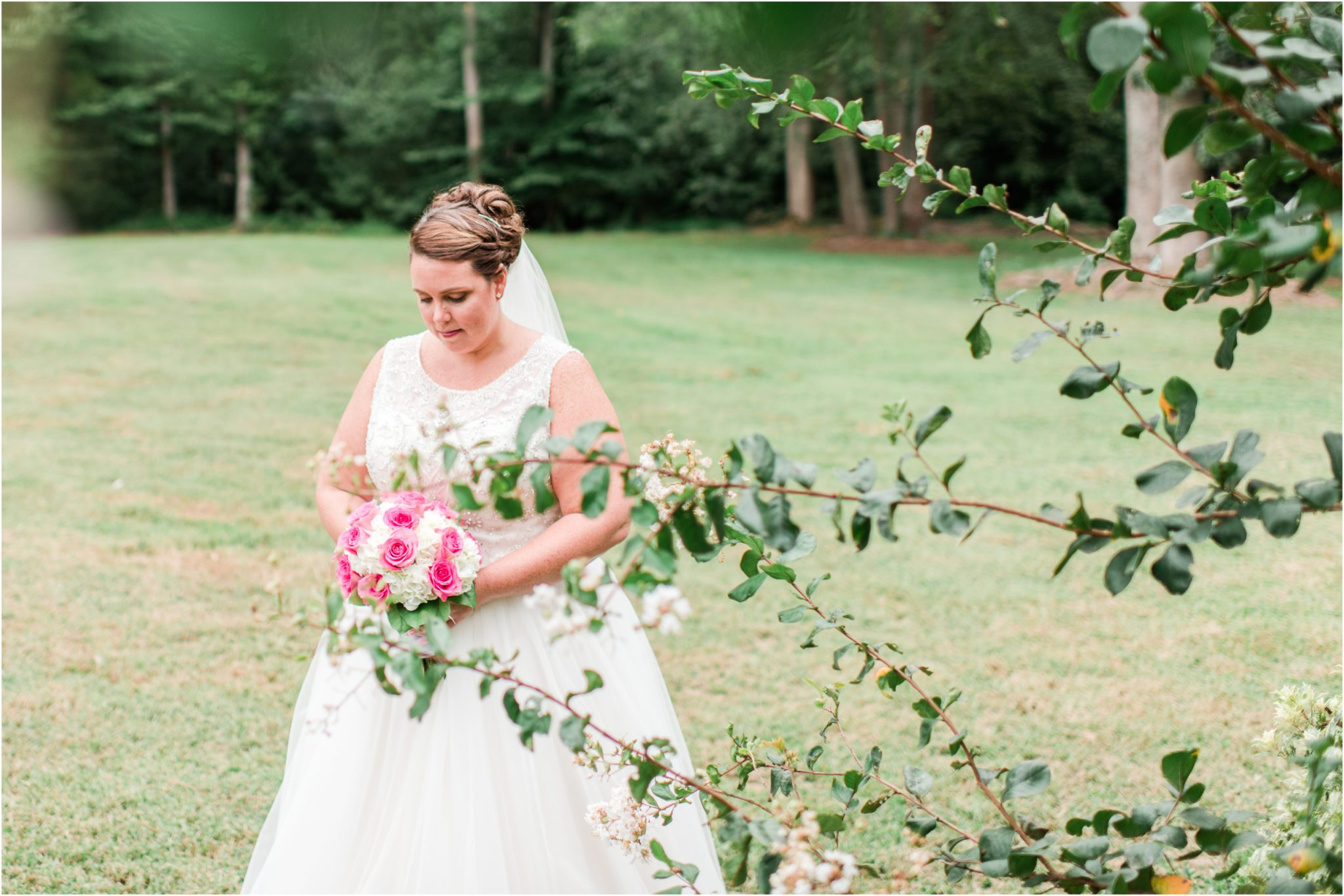 Summer Hollow at Paris Mountain Bridal Session