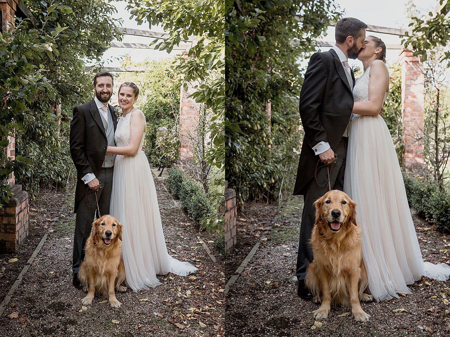 dogs at weddings in cheshire