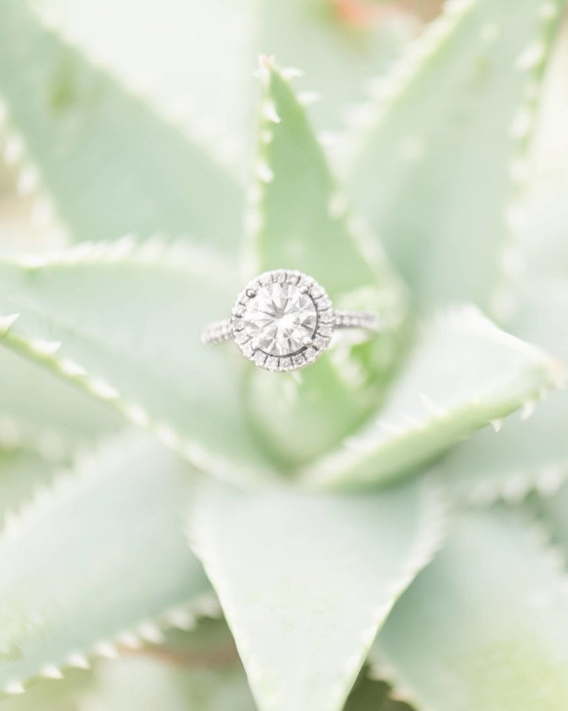 Ring on a cactus